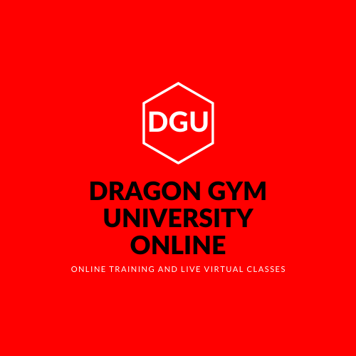 Online Training Modules and Live Virtual Kids Martial Arts Classes